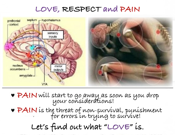 Love, Respect, and the Anatomy of Pain